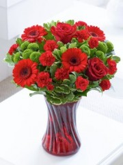 Colour Your Day with Romance Vase
