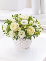 Vanilla Cream Rose & Freesia Arrangement