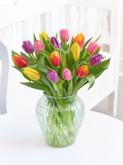 Mixed Tulip Vase