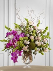 Soft Sophistication Arrangement