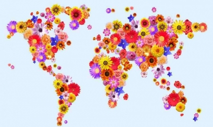Spreading Happiness Across the World With Flowers